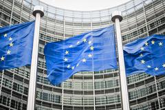 Хельга Шмид: ЕС беспокоят поставки С-300 Ирану