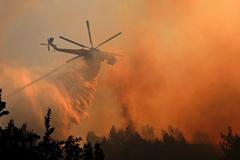 В зоне отчуждения под Чернобылем загорелся лес
