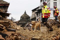 Более 40 россиян в Непале не вышли на связь