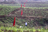 Министр по делам Дальнего Востока опроверг договоренность с Китаем по аренде земель