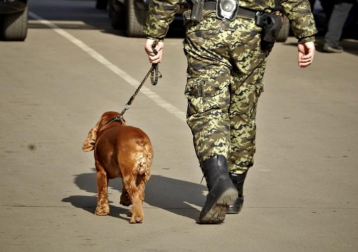 В минобороны ДНР не подтвердили задержание украинскими пограничниками грузовика с оружием