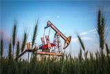 Аналитики не поверили в долгосрочность низких цен на нефть