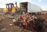Таможня РФ начала разработку правил уничтожения санкционных продуктов