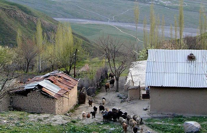 Брат мятежного генерала сдался властям Таджикистана