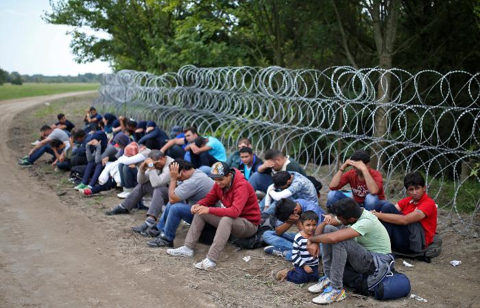 Германия отказалась продать Венгрии сетку для забора на границе