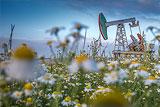 Нефтяники попросили Путина не повышать налоги на отрасль