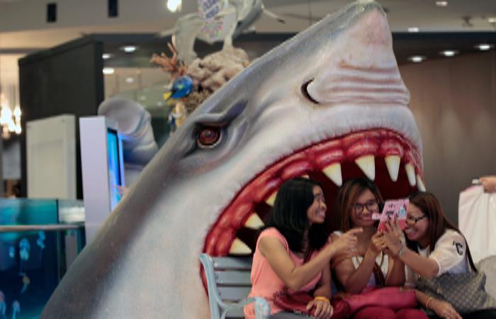 Экстремальные селфи стали опаснее укусов акул