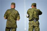 СФ начал рассматривать вопрос об использовании вооруженных сил РФ за рубежом