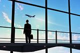 """Перевозка пассажиров """"Трансаэро"""" продлена до 15 декабря"""