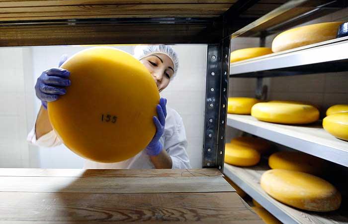 Россельхознадзор назвал неверно понятой информацию о фальсифицированном сыре