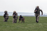Великобритания направит в страны Балтии военный контингент