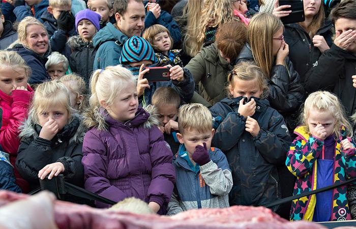 Датский зоопарк провел для детей показательное вскрытие льва