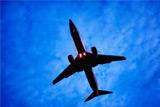 """Пассажиры """"Трансаэро"""" попросили Минтранс помочь им улететь в отпуск"""