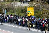 Премьер Словении предупредил об угрозе развала ЕС из-за мигрантов