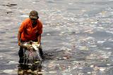 Губернатор Пуэрто-Рико запретил пластиковые пакеты