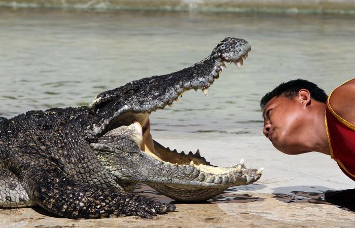 В Индонезии построят островную тюрьму под охраной крокодилов-людоедов