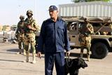 СМИ сообщили о задержании в Египте подозреваемых в теракте на А321