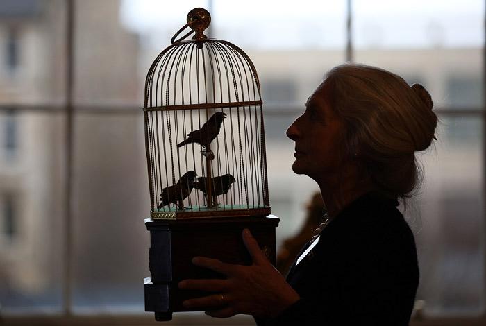 Пение птиц и людей оказалось сходным