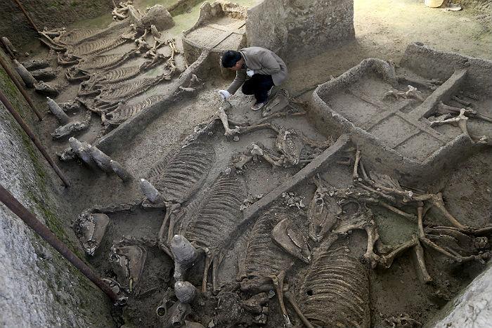 Китайские археологи нашли 2500-летнюю гробницу королевской семьи