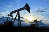 Citigroup спрогнозировал цену нефти Brent около $60 в конце 2016 года