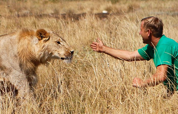 Директор ялтинского зоопарка получил условный срок за рукоприкладство