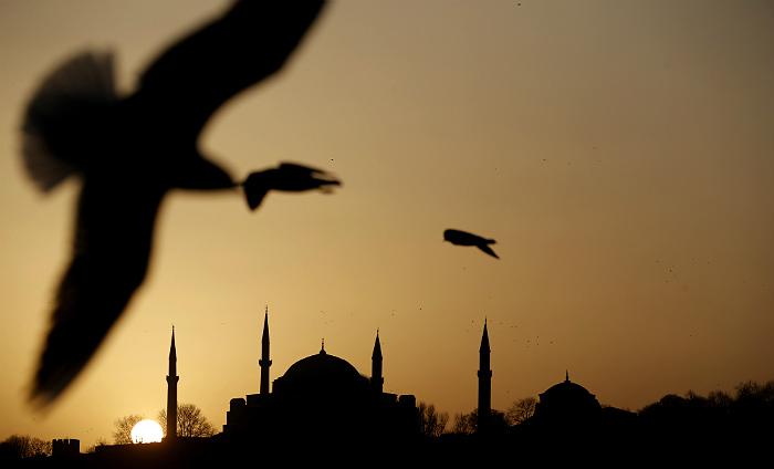 Ростуризм исключил из реестра туроператоров связанные с турецким бизнесом компании