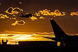 СМИ сообщили о приостановке полетов Pegasus Airlines и Onur Airways в Россию