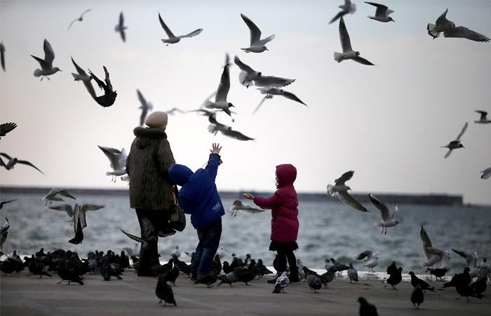 Туроператоры предсказали подорожание отдыха в Крыму на 30%