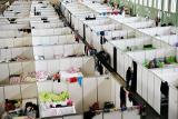 Профсоюз полиции Германии опроверг данные МВД о ситуации с беженцами