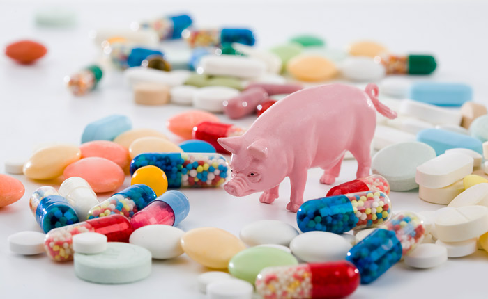 Среди заболевших гриппом в Москве у 30% диагностирован свиной грипп