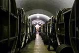 Минсельхоз не увидел причин для резкого роста цен на вино