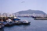 Моряки из РФ и Украины задержаны на год в корейском порту без зарплаты