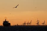 СМИ сообщили о затоваривании танкеров близ Роттердама