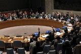 СБ ООН единогласно принял резолюцию в поддержку перемирия в Сирии