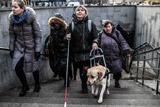 Суд отменил приговор по делу о краже собаки-поводыря