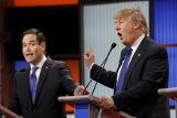 Трампа обвинили в организации политического цирка