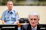 МТБЮ приговорил Караджича к 40 годам тюрьмы