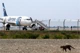 СМИ уточнили имя угонщика египетского аэробуса А320