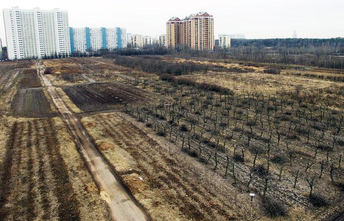 В Минприроды высказались против застройки земель Тимирязевской сельхозакадемии