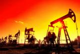 Нефтедобывающие страны не смогли договориться о заморозке добычи