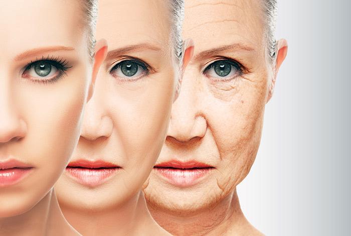 Ученые обнаружили ген старости