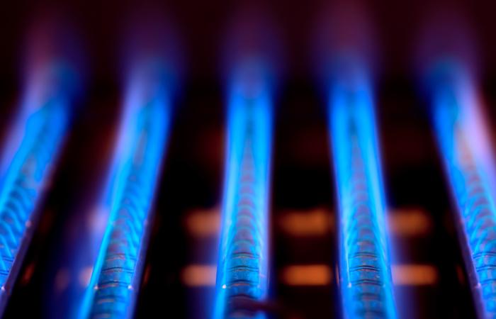 Промежуточные переговоры с Белоруссией о цене на газ ни к чему не привели