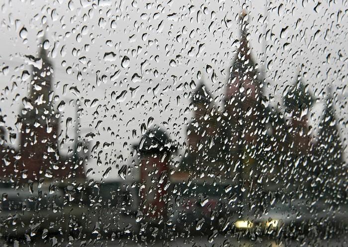 В Москве за сутки выпало почти 20% месячной нормы осадков
