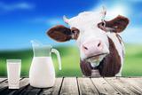 """Производству молока в 2016 году предрекли падение ниже """"психологической"""" отметки"""