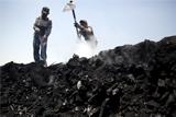 Япония собралась инвестировать в порты Дальнего Востока для экспорта угля
