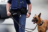 Полиция в Бельгии задержала 12 человек по подозрению в терроризме