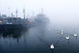 Военная прокуратура заявила об информировании экс-руководства Балтфлота о проблемах