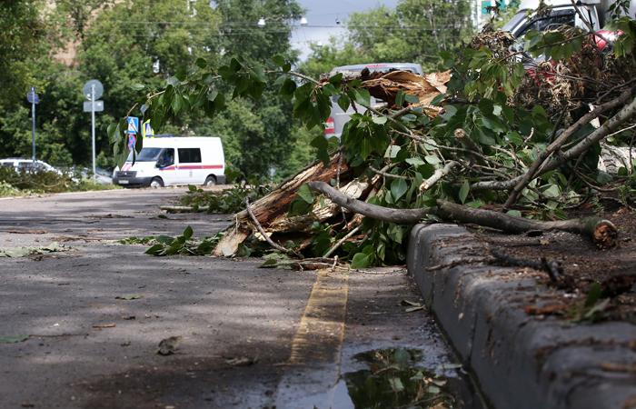 Ураган снес более 20 домов в Подмосковье