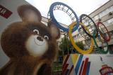 СМИ узнали о риске сокращения олимпийской делегации РФ в десять раз
