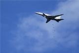 Дальние бомбардировщики Ту-22М3 нанесли удары по позициям ИГ близ Пальмиры